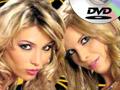 Sexshop Dvd